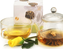Buy Adagio Teas